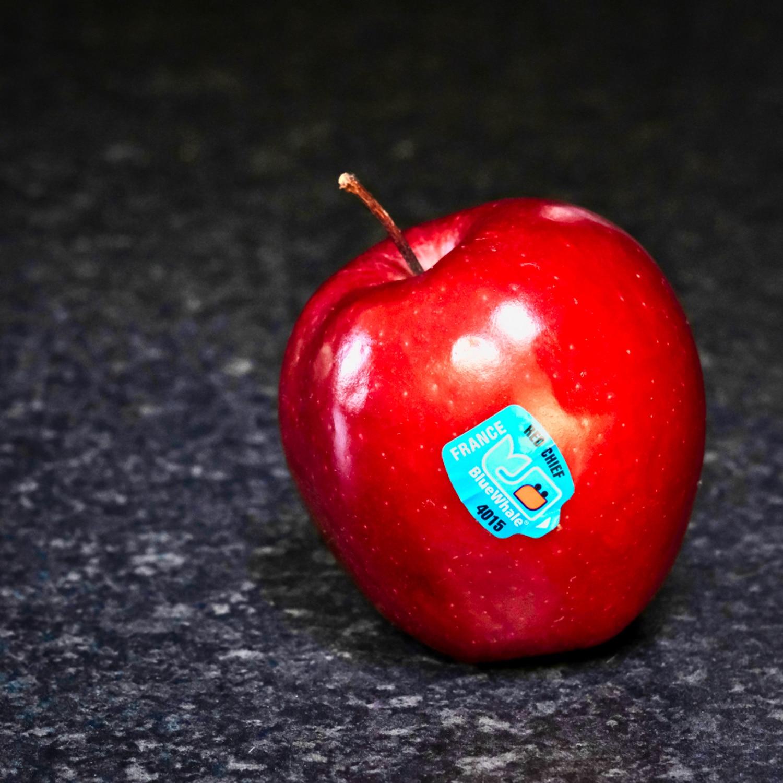 Red-Apple-©HelenBushe